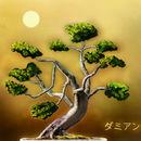 -bonsai-