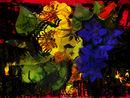 flores-granada